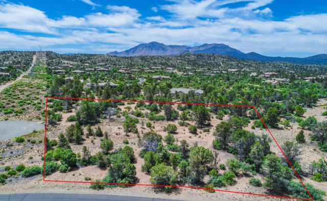 5725 W Almosta Ranch Road, Prescott, AZ 86305 (#1022460) :: Shelly Watne