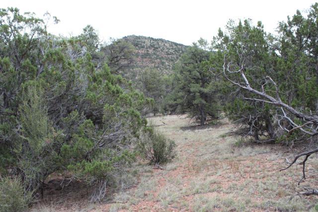 Lot 1083 Sierra Verde Ranch, Seligman, AZ 86337 (#1022546) :: West USA Realty of Prescott
