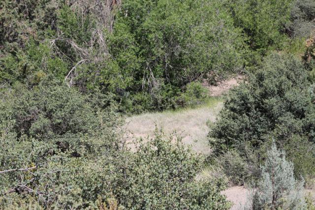2515 Sandia Drive, Prescott, AZ 86301 (#1022685) :: West USA Realty of Prescott
