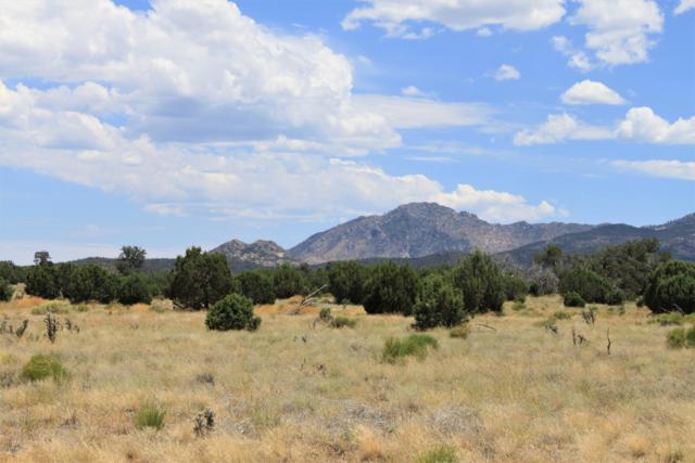 12655 N Puntenney Road, Prescott, AZ 86305 (#1022784) :: West USA Realty of Prescott
