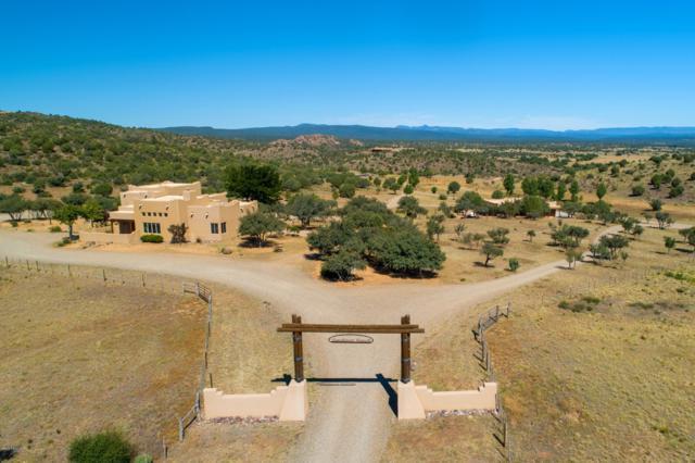 12800 N Tonto Road, Prescott, AZ 86305 (#1022867) :: Shelly Watne