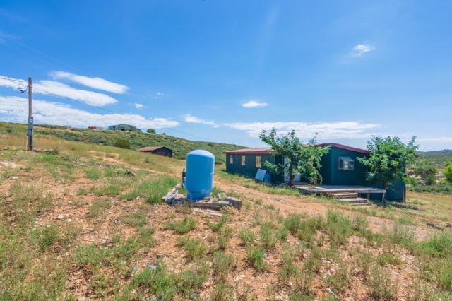 1775 S Premonition Lane, Dewey-Humboldt, AZ 86327 (#1022869) :: HYLAND/SCHNEIDER TEAM