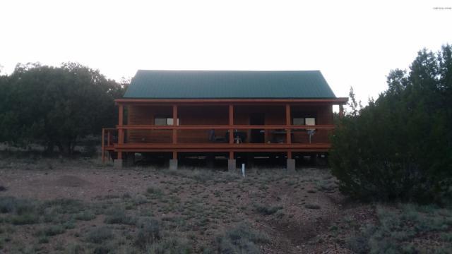 890 Sierra Verde Ranch, Seligman, AZ 86337 (#1022907) :: West USA Realty of Prescott