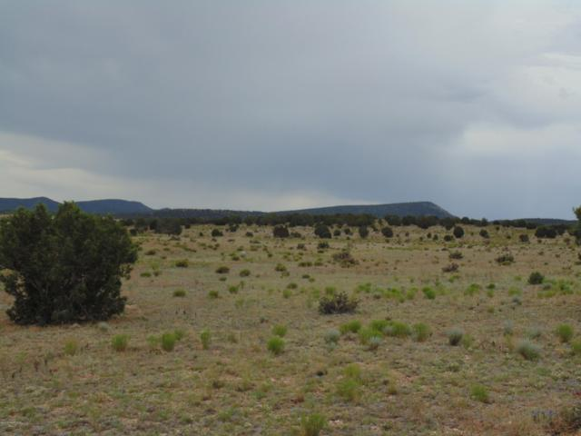 301-17-043 N Cross Mountain Ranch, Seligman, AZ 86337 (#1022977) :: West USA Realty of Prescott