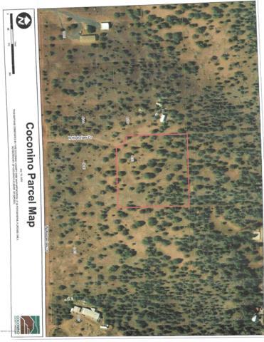 4353 N Highview Drive, Ash Fork, AZ 86320 (#1023023) :: HYLAND/SCHNEIDER TEAM