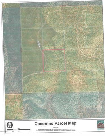 904 Wolf Rd, Ash Fork, AZ 86320 (#1023024) :: HYLAND/SCHNEIDER TEAM