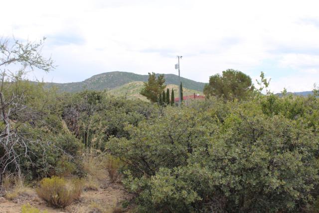 7320 Veda Lane, Wilhoit, AZ 86332 (MLS #1023047) :: Conway Real Estate
