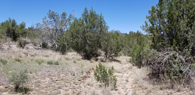 57712 Charro Road, Seligman, AZ 86337 (#1023056) :: HYLAND/SCHNEIDER TEAM
