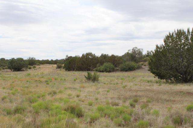 32078 W Calle Ines, Seligman, AZ 86337 (#1023062) :: HYLAND/SCHNEIDER TEAM