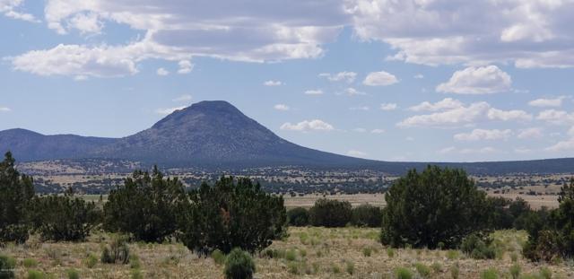 000e_w Antelope Run Road, Ash Fork, AZ 86320 (#1023065) :: HYLAND/SCHNEIDER TEAM