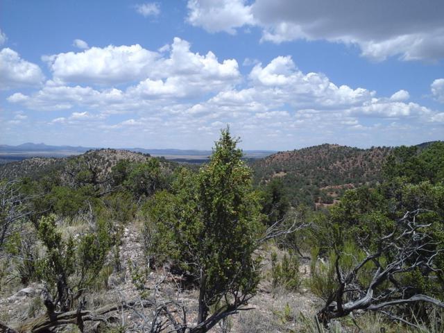 Lot 117 Arizona Road, Ash Fork, AZ 86320 (#1023308) :: Shelly Watne