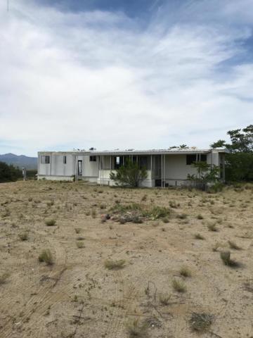 8190 W Flint Drive, Wilhoit, AZ 86332 (#1023411) :: Shelly Watne