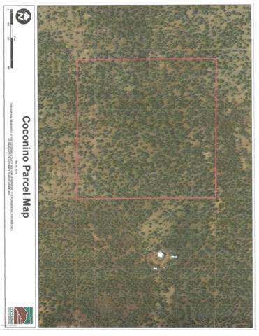 93 Juniperwood Ranch, Ash Fork, AZ 86320 (#1023578) :: Shelly Watne