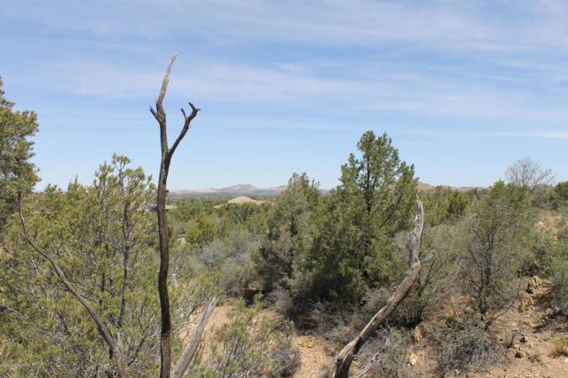 5425 W Edith Circle, Prescott, AZ 86305 (MLS #1023619) :: Conway Real Estate