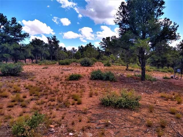 15777 N Lucy Lane, Prescott, AZ 86305 (#1024503) :: HYLAND/SCHNEIDER TEAM