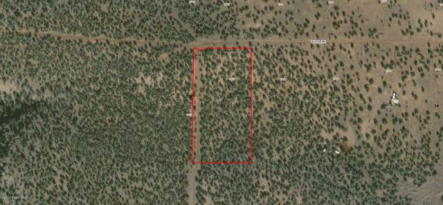 2962 W Plate Road, Ash Fork, AZ 86320 (#1024534) :: West USA Realty of Prescott