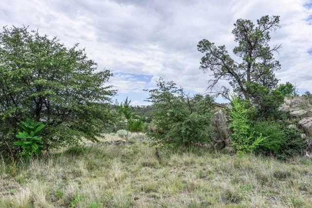 2425 Ewin Drive, Prescott, AZ 86305 (MLS #1024547) :: Conway Real Estate