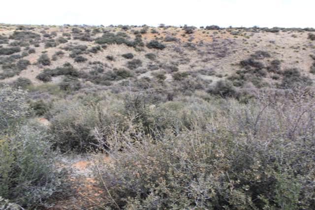 9710 E Antrim Road, Dewey-Humboldt, AZ 86327 (#1024674) :: HYLAND/SCHNEIDER TEAM