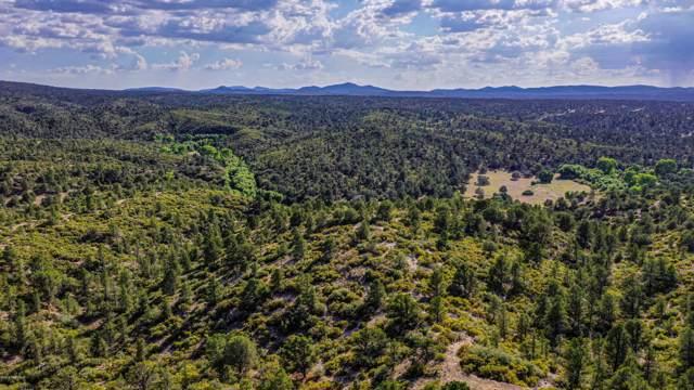 6450 W Almosta Ranch Road, Prescott, AZ 86305 (#1025180) :: West USA Realty of Prescott