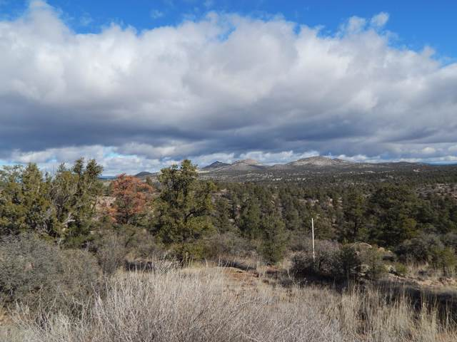 16151 N Top View Lane, Prescott, AZ 86305 (MLS #1025203) :: Conway Real Estate