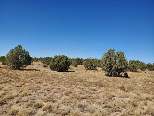 0 305-01-042A Cougar Ridge Road, Paulden, AZ 86334 (#1025235) :: Shelly Watne