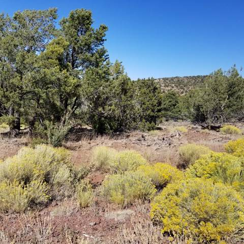 2887 E Overlook Drive, Williams, AZ 86046 (#1025246) :: Shelly Watne