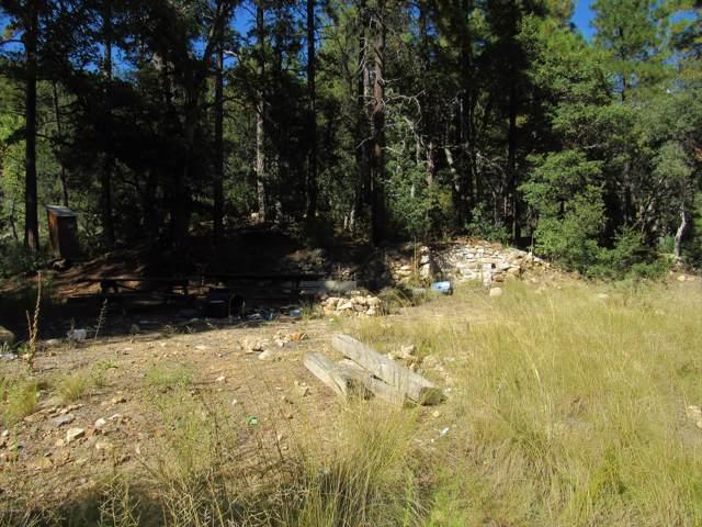 22653 S Eagle Mine Road, Crown King, AZ 86343 (#1025287) :: West USA Realty of Prescott