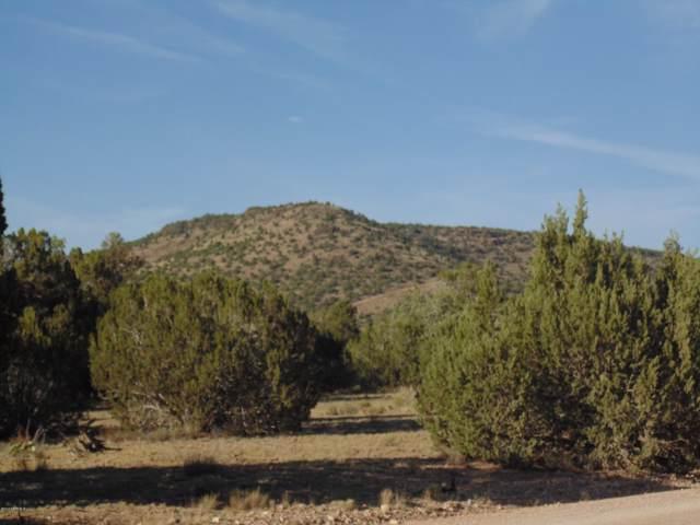 Lot 99 Juniper Mountain Ranch, Seligman, AZ 86337 (#1025363) :: West USA Realty of Prescott