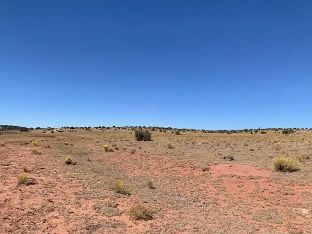 0 Jandscountry Ln, Seligman, AZ 86337 (#1025426) :: Shelly Watne