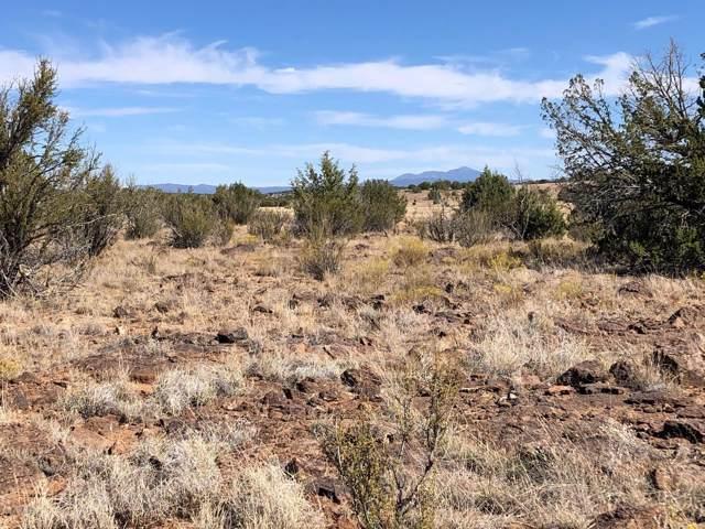 00 N Headwaters Road, Paulden, AZ 86334 (MLS #1025579) :: Conway Real Estate