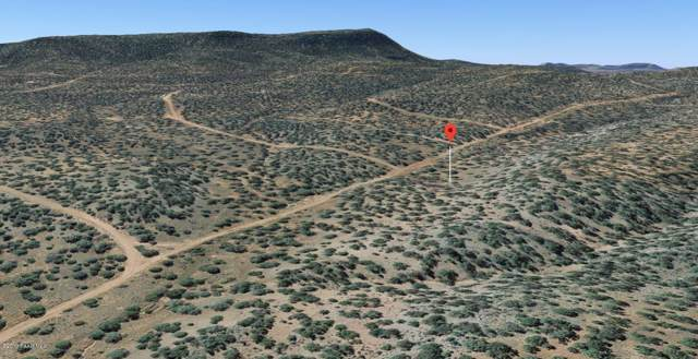 34440 Potrero Parkway, Seligman, AZ 86337 (#1025863) :: West USA Realty of Prescott