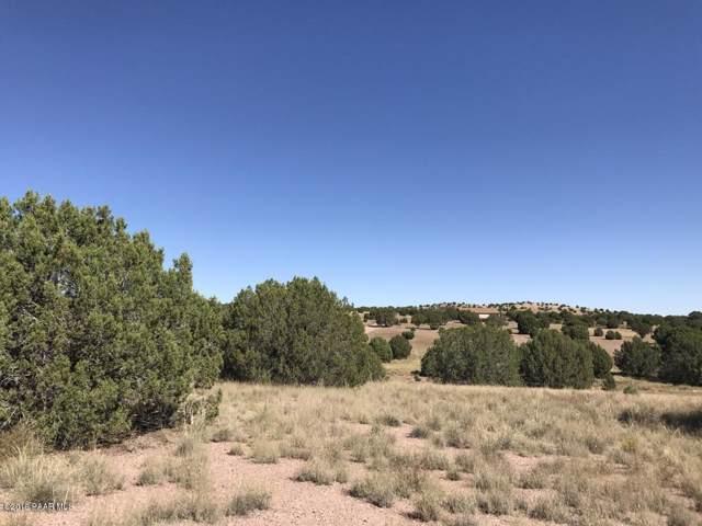 5065 Dingo Lane, Chino Valley, AZ 86323 (#1025880) :: West USA Realty of Prescott
