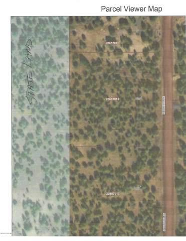 2162 N Bolinda Lane, Ash Fork, AZ 86320 (#1025922) :: West USA Realty of Prescott