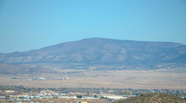 376 N Fitzmaurice Drive, Prescott, AZ 86303 (#1026007) :: HYLAND/SCHNEIDER TEAM
