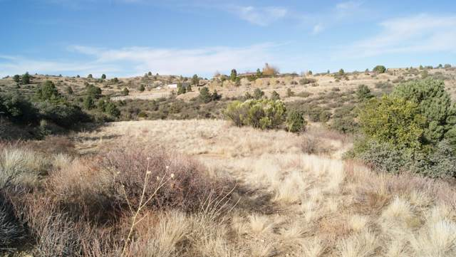 16776 W Trap Road, Peeples Valley, AZ 86332 (#1026151) :: West USA Realty of Prescott