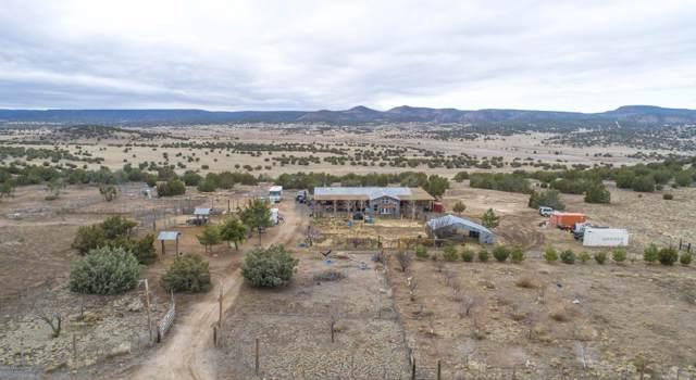42524 N Deer Camp Trail, Seligman, AZ 86337 (#1026453) :: West USA Realty of Prescott