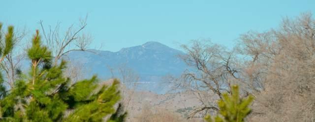 515 Grove Lane, Chino Valley, AZ 86323 (#1026632) :: Shelly Watne