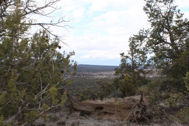 Lot 8 Shadow Rock Ranch, Seligman, AZ 86337 (#1026668) :: HYLAND/SCHNEIDER TEAM