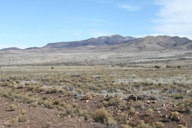 Lot 148 Great Western Road, Wikieup, AZ 85360 (#1026797) :: Shelly Watne