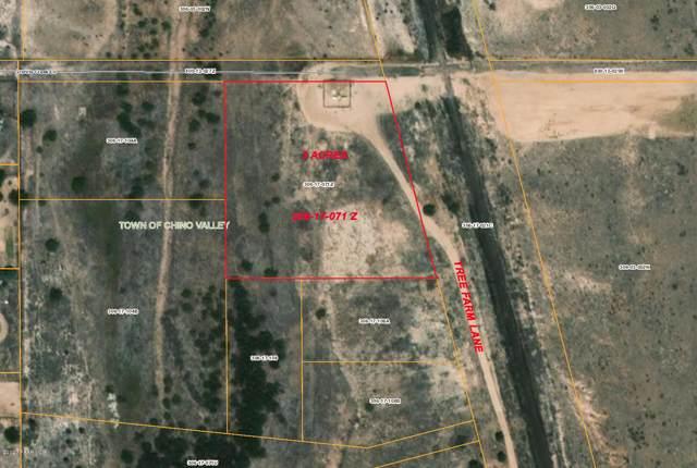 2590 Tree Farm Lane, Chino Valley, AZ 86323 (#1026802) :: HYLAND/SCHNEIDER TEAM