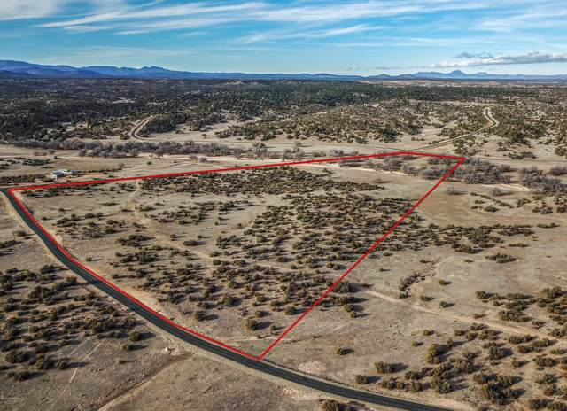 43 W Hitt Wash Road, Prescott, AZ 86305 (MLS #1027068) :: Conway Real Estate