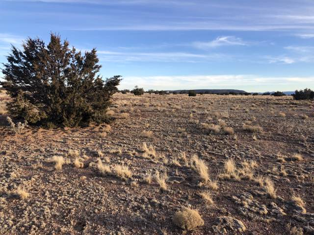 27787 W San Juan Lane, Seligman, AZ 86337 (#1027129) :: West USA Realty of Prescott