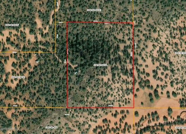 Lot 505 Juniper Hills Unit 2, Ash Fork, AZ 86320 (#1027415) :: West USA Realty of Prescott