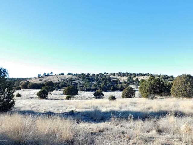 10 Acres S Cowboy Springs Trail, Prescott, AZ 86305 (MLS #1027534) :: Conway Real Estate