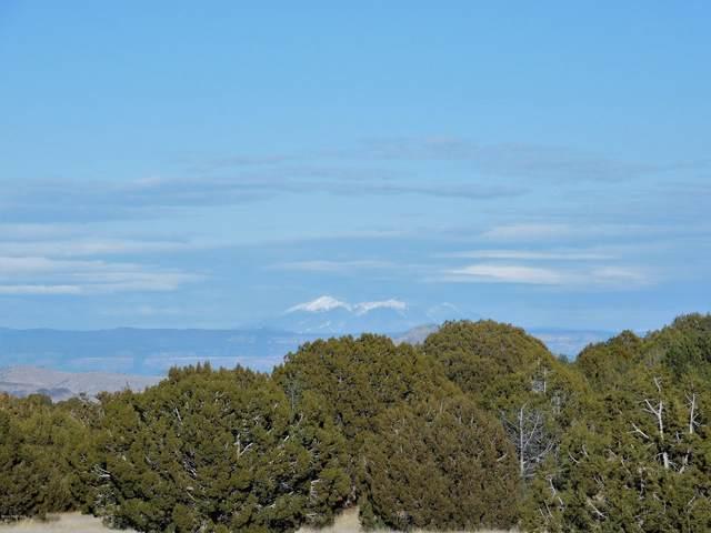 10 Acres W Longbranch Trail, Prescott, AZ 86305 (#1027535) :: Shelly Watne