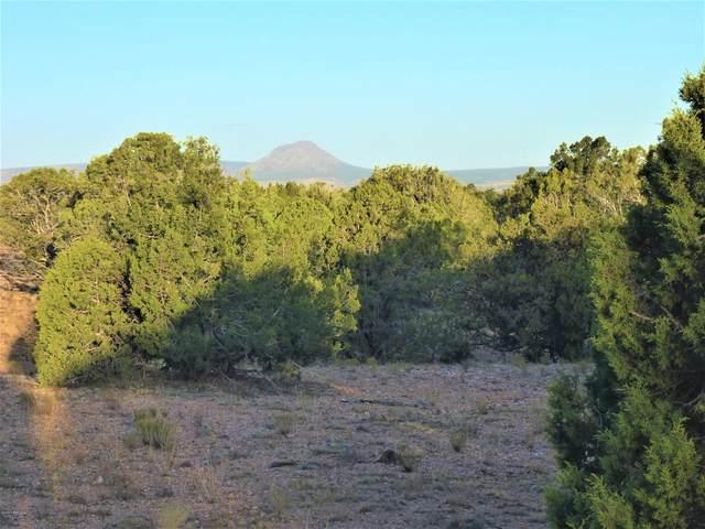 474 Cattle Drive, Ash Fork, AZ 86320 (#1027576) :: West USA Realty of Prescott