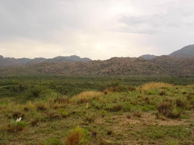 26675 W O X Ranch Road, Congress, AZ 85332 (#1027647) :: Shelly Watne