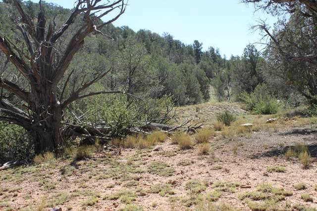 Lot 273 Arizona Road, Ash Fork, AZ 86320 (#1027678) :: West USA Realty of Prescott