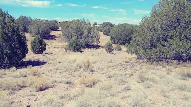 2800 W Eagle Ridge Drive, Paulden, AZ 86334 (MLS #1027679) :: Conway Real Estate