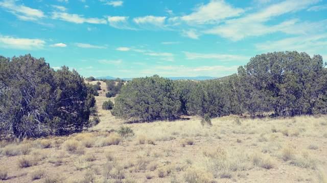 2780 W Eagle Ridge Drive, Paulden, AZ 86334 (MLS #1027680) :: Conway Real Estate